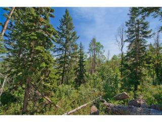 3650 N Wolf Creek Ranch Rd Lot #56, Woodland, UT 84036 (MLS #11603712) :: The Lange Group