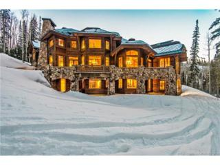 91 White Pine Canyon Road, Park City, UT 84060 (MLS #11700206) :: The Lange Group