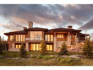 3005 E Wapiti Canyon Road, Park City, UT 84098 (MLS #11702005) :: Lawson Real Estate Team - Engel & Völkers