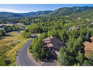 2410 Iron Canyon Drive, Park City, UT 84060 (MLS #11702092) :: Lawson Real Estate Team - Engel & Völkers