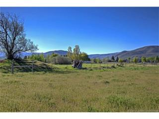 2300 S Highway 40, Heber City, UT 84032 (MLS #11702106) :: Lawson Real Estate Team - Engel & Völkers