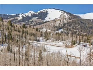 245 White Pine Canyon Road, Park City, UT 84060 (MLS #11701663) :: The Lange Group