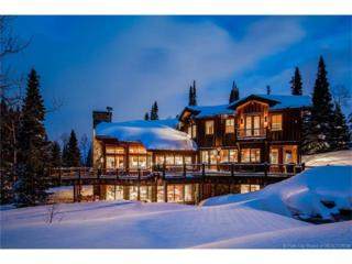 101 White Pine Canyon Road, Park City, UT 84060 (MLS #11700305) :: The Lange Group
