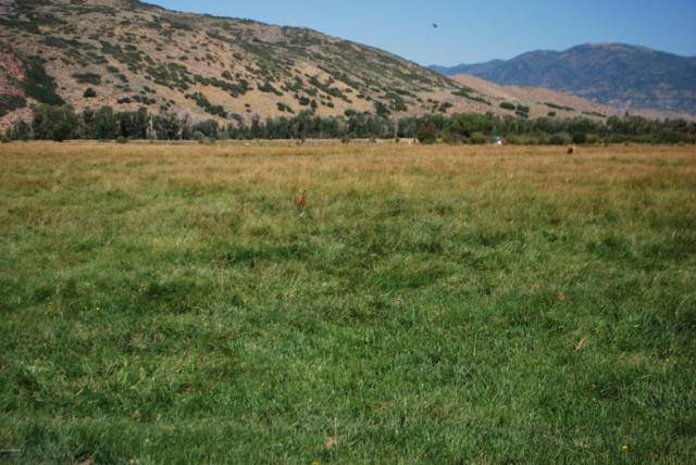 3144 W 5000 North, Peoa, UT 84061 (MLS #11906043) :: High Country Properties