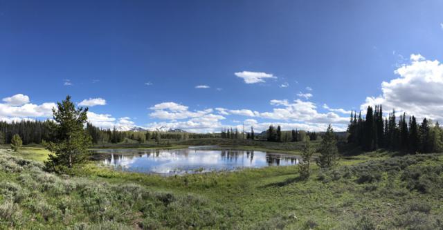 1440 Monviso West Fork, Kamas, UT 84036 (MLS #11906679) :: The Lange Group