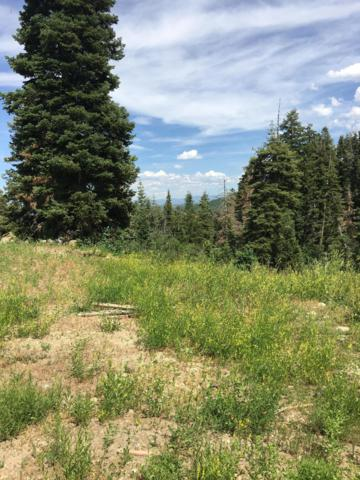 229 Parkview Drive, Park City, UT 84098 (MLS #11906901) :: High Country Properties