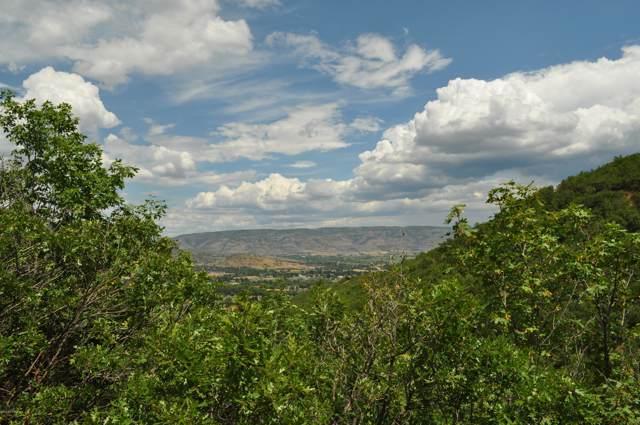 143 Berry's Way, Midway, UT 84049 (MLS #11907426) :: Lawson Real Estate Team - Engel & Völkers