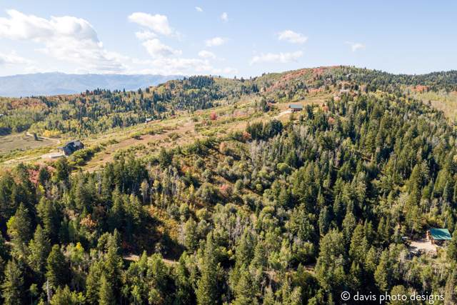 517 Porcupine Loop, Coalville, UT 84017 (MLS #11908019) :: Lawson Real Estate Team - Engel & Völkers