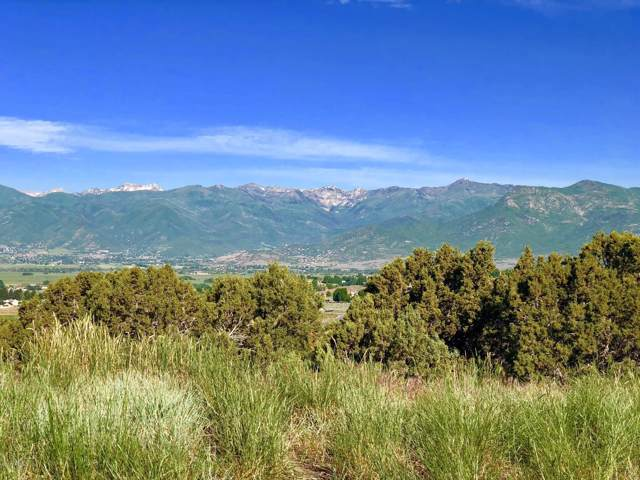 2366 E Flat Top Mountain Dr (Lot 91), Heber City, UT 84032 (#11908434) :: Red Sign Team