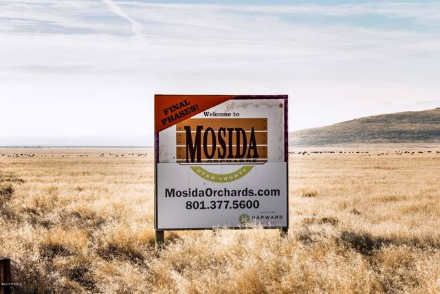 Lot 50 Mosida Orchards, Elberta, UT 84626 (#11908716) :: Red Sign Team