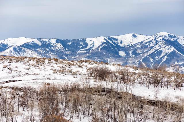8605 N Sunset Circle, Park City, UT 84098 (MLS #11908996) :: High Country Properties