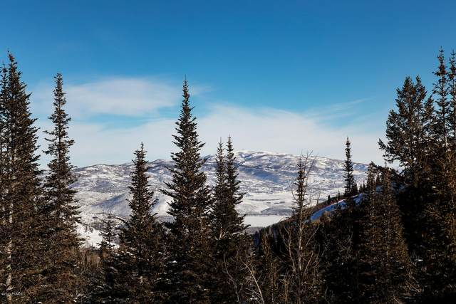 159 White Pine Canyon Road, Park City, UT 84060 (MLS #12000476) :: High Country Properties