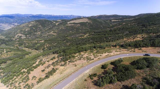 2317 Preserve Drive, Park City, UT 84098 (MLS #12000780) :: High Country Properties