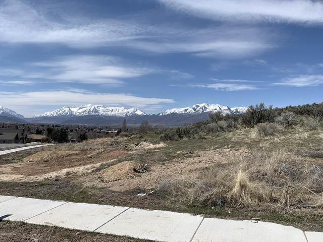 1267 N Valley Heights Circle, Heber City, UT 84032 (MLS #12001055) :: Park City Property Group