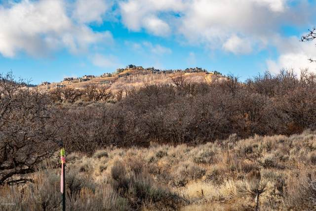 1462 W Ursa Way, Heber City, UT 84032 (MLS #12001315) :: Lookout Real Estate Group