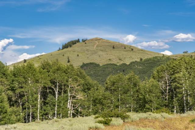 1896 W Mountain Haven Lane, Midway, UT 84049 (MLS #12002043) :: High Country Properties