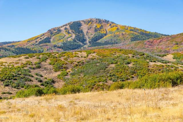 11352 N Orion Drive, Heber City, UT 84032 (MLS #12002724) :: High Country Properties