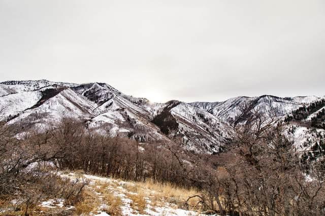 1380 S Eagle Nest Drive, Other City - Utah, UT 84653 (#12002869) :: Red Sign Team