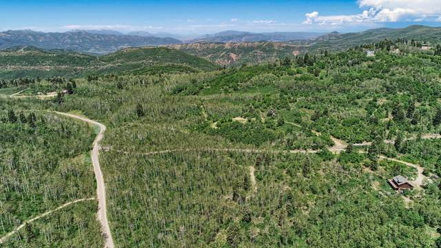 Sg-D-68 Upper Cove Rd, Park City, UT 84098 (MLS #12003439) :: High Country Properties