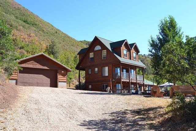 1742 E Weber Wild Road, Oakley, UT 84055 (MLS #12003480) :: High Country Properties