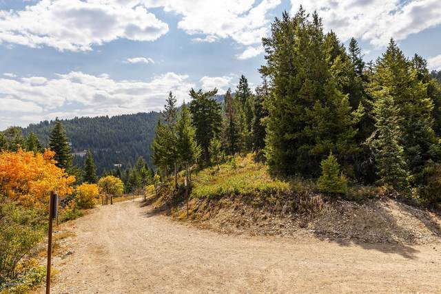 251 Acres Tax Id: Pp-58-A-4, Park City, UT 84098 (MLS #12003647) :: Lookout Real Estate Group