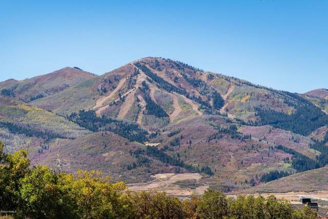 1285 E Lasso Trail, Heber City, UT 84032 (MLS #12003795) :: High Country Properties