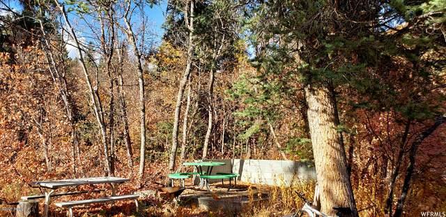 Happiness Trail, Midway, UT 84049 (MLS #12003998) :: Lawson Real Estate Team - Engel & Völkers
