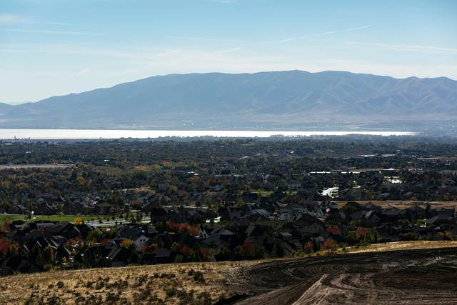 871 W Lakeview Drive, Alpine, UT 84004 (#12004236) :: Red Sign Team