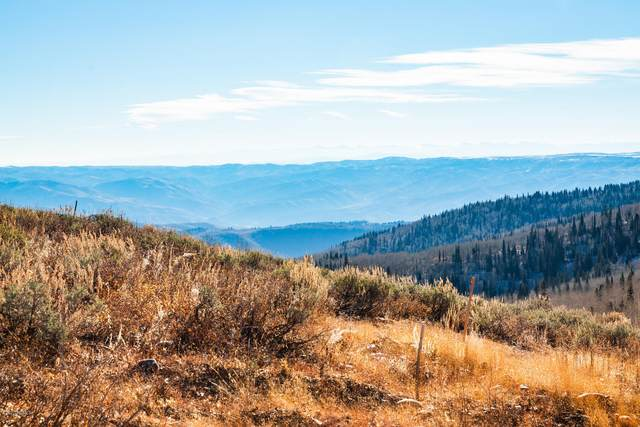 8507 E Overlook Drive, Eden, UT 84310 (MLS #12004304) :: High Country Properties