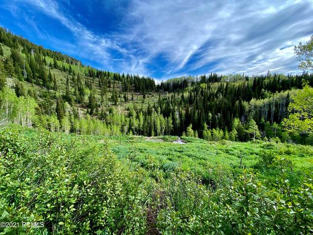 Highway 39, Huntsville, UT 84317 (MLS #12100509) :: High Country Properties
