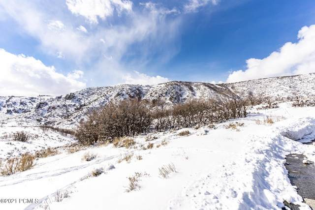 9233 Spotted Owl Court, Park City, UT 84098 (MLS #12100686) :: Summit Sotheby's International Realty