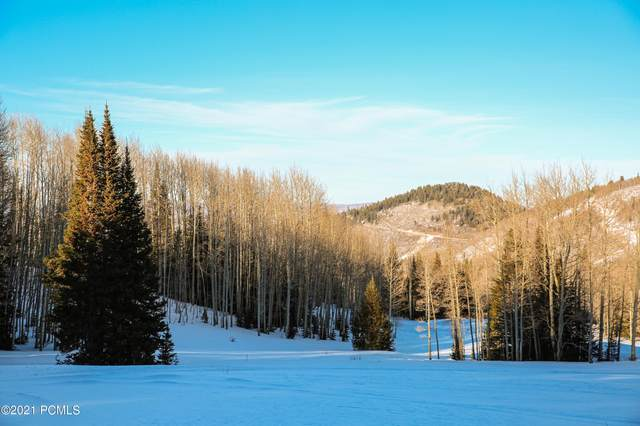 323 White Pine Canyon Road, Park City, UT 84060 (MLS #12100817) :: High Country Properties