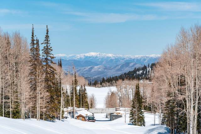 331 White Pine Canyon Road, Park City, UT 84060 (MLS #12101677) :: High Country Properties