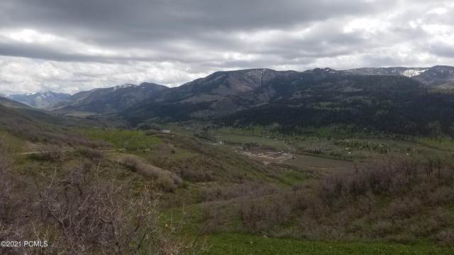 153 Mountain View, Oakley, UT 84055 (MLS #12102179) :: High Country Properties