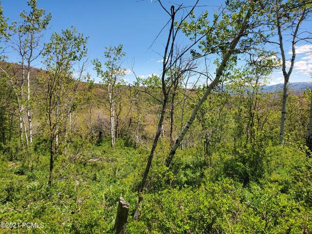 10023 Basin Canyon Rd. Road, Park City, UT 84098 (MLS #12102397) :: High Country Properties