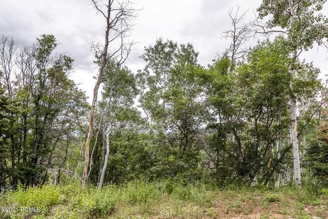 2020 River Birch Road, Coalville, UT 84017 (MLS #12102668) :: High Country Properties
