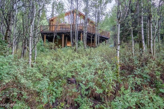 650 Sugar Pine Drive, Oakley, UT 84055 (MLS #12103085) :: Lookout Real Estate Group
