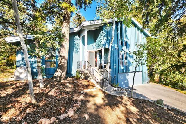 115 Parkview Place, Park City, UT 84098 (MLS #12104053) :: Lookout Real Estate Group