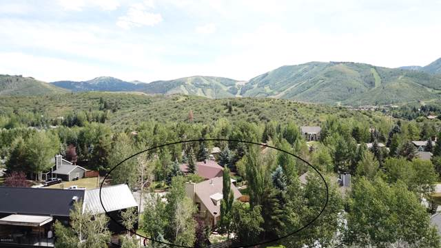 770 Red Maple Court, Park City, UT 84060 (MLS #11907363) :: High Country Properties