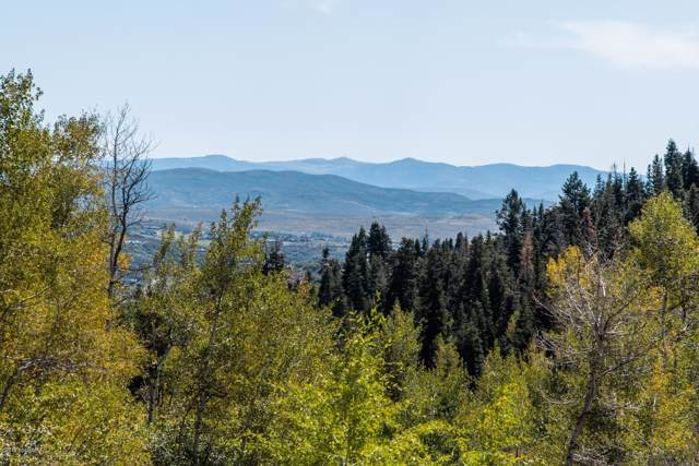 Tollgate Canyon, Wanship, UT 84017 (MLS #11907599) :: Park City Property Group