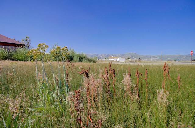 6400 Park Ridge Drive, Park City, UT 84098 (MLS #12002962) :: High Country Properties