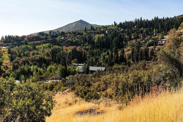 7676 Buckboard Drive, Park City, UT 84098 (MLS #12003418) :: Park City Property Group
