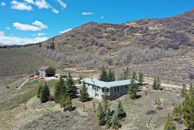 5020 Weber Mountain View Road, Oakley, UT 84055 (MLS #12101540) :: High Country Properties
