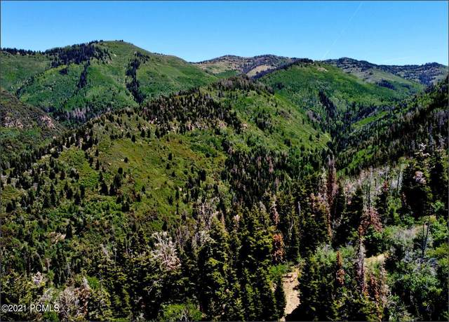 S East Of Spring City, Other City - Utah, UT 84003 (MLS #12102298) :: Lookout Real Estate Group