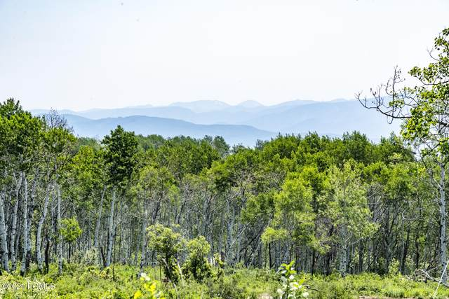 2674 S Forest Meadow Road, Wanship, UT 84017 (MLS #12102451) :: High Country Properties