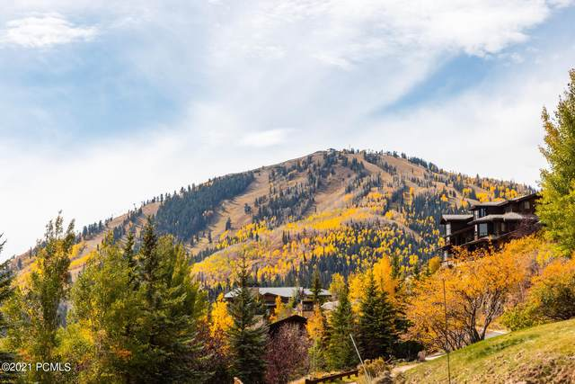 9865 N Summit View Drive, Park City, UT 84060 (MLS #12103585) :: Lookout Real Estate Group