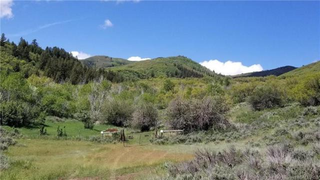 11+/- Mi. N Jeremy Ranch Road, Morgan, UT 84055 (MLS #11903362) :: High Country Properties