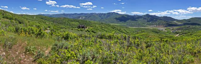 1950 W Red Hawk Trail, Park City, UT 84098 (MLS #11903459) :: High Country Properties