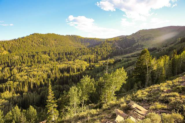 146a White Pine Canyon Road, Park City, UT 84060 (MLS #11900236) :: High Country Properties