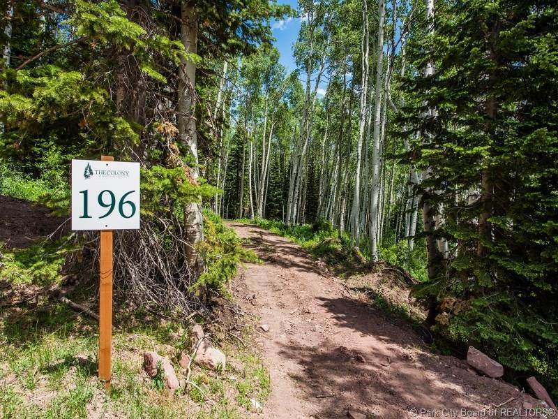 196 White Pine Canyon Road - Photo 1